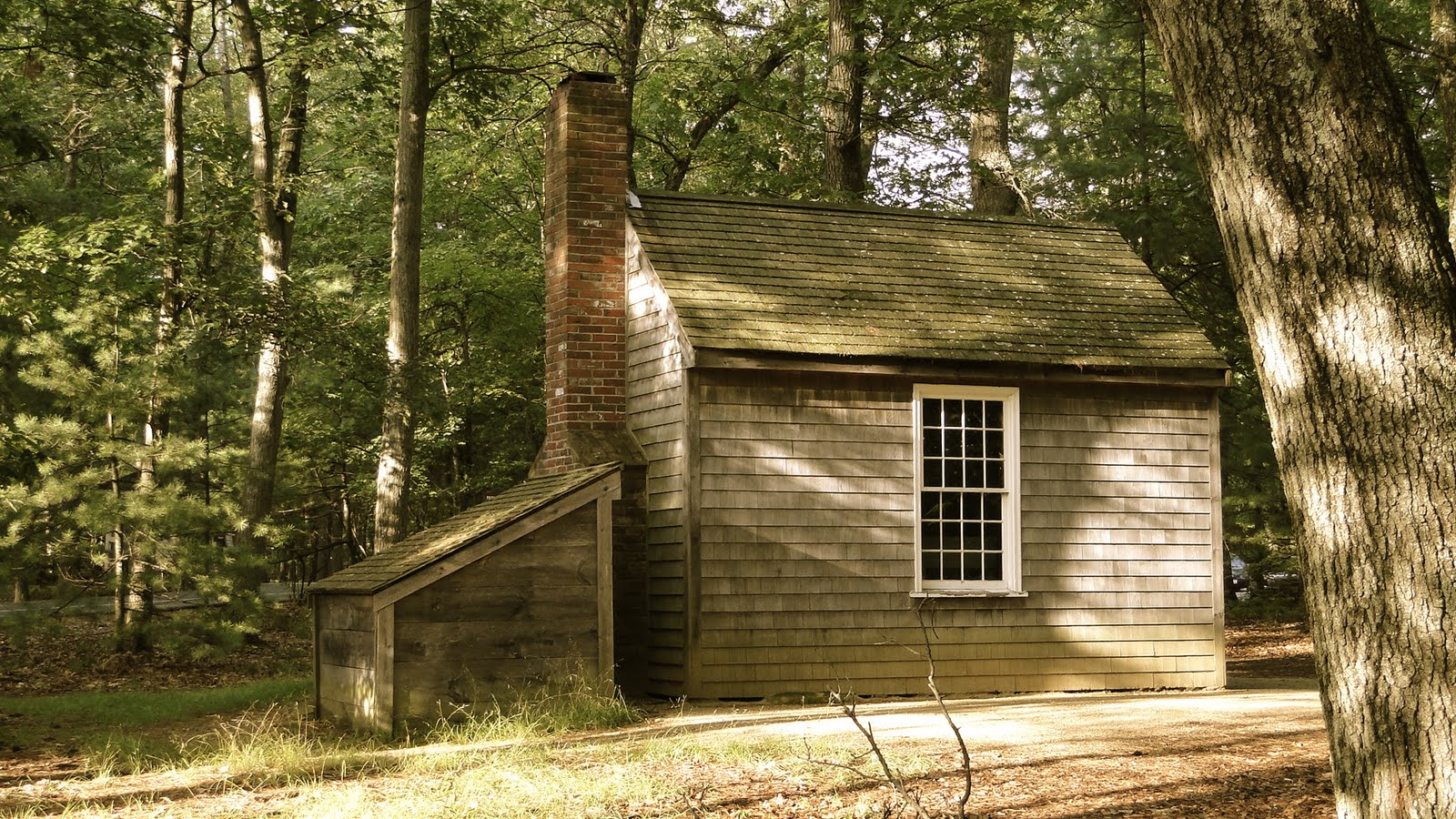 הרשת הירוקה: אגם וולדן, למידה משמעותית, חינוך חוץ. בקתת עץ ביער בה התגורר הנרי תורו