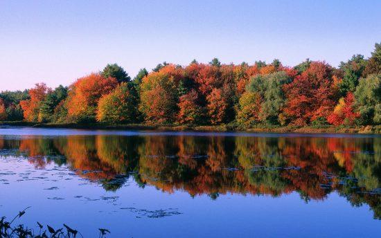 אגם וולדן בסתיו