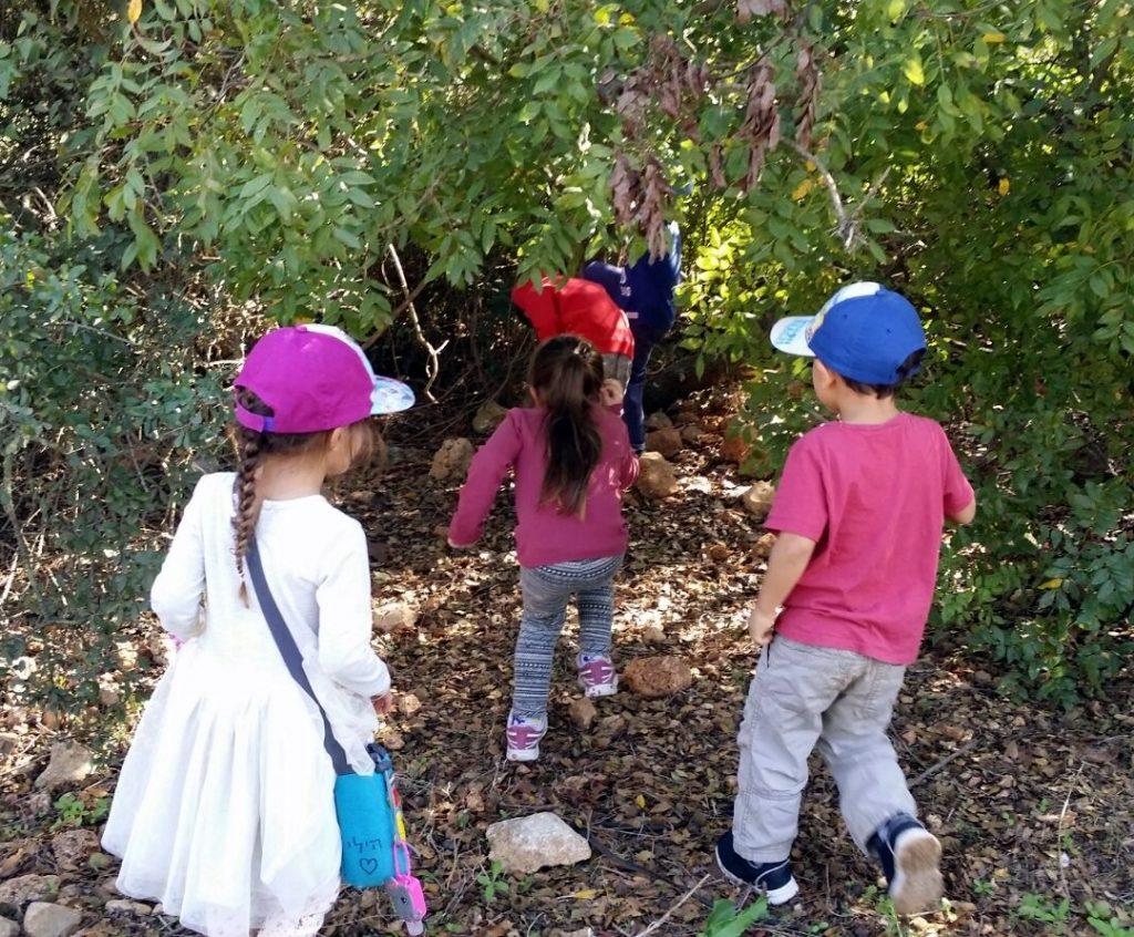 הרשת הירוקה: למידה משמעותית - ילדים בין השיחים