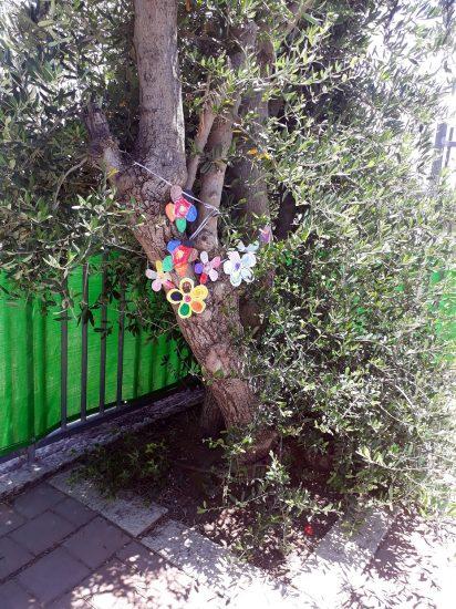 עץ זית מקושט בגן