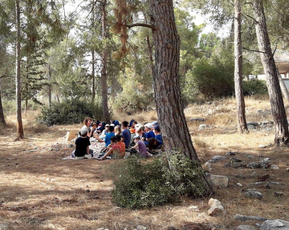 כיתת ילדים ביער