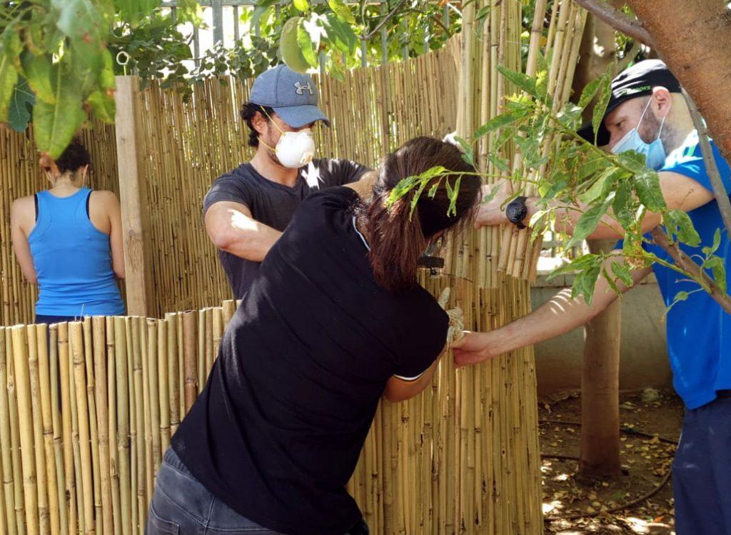 הרשת הירוקה: הורים וצוות בונים את דופן הבקתה