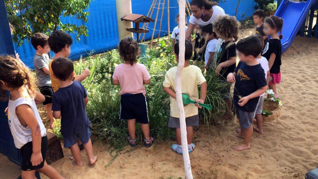 לומדים על הגינה בחצר גן הילדים