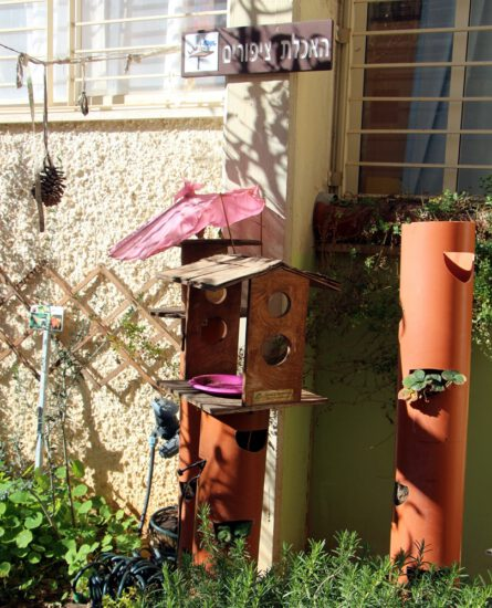 פינה לציפורים בגן ילדים