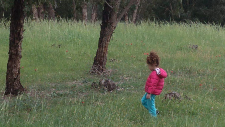 מדיטציה בטבע עם ילדי הגן