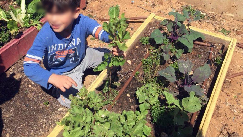 סוד הגן המרפא: מרחבים ירוקים כמרחבים טיפוליים בגן הילדים